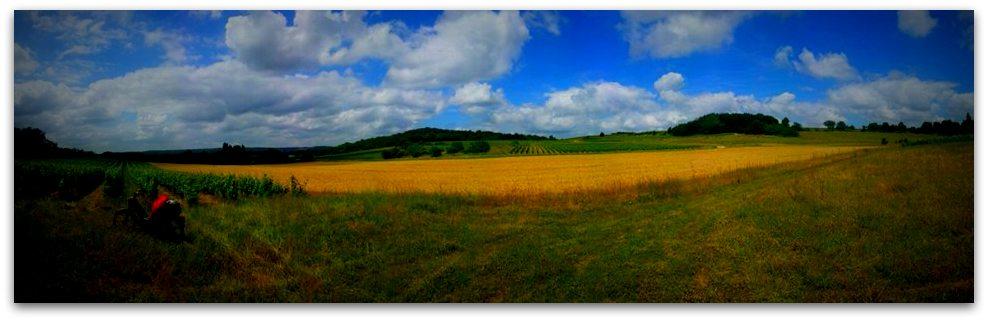 Champ panorama 2
